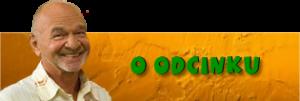 O_odcinku